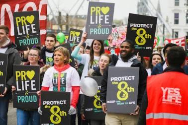 Providas-Irlanda-Life-Institute